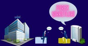 Forex Şirketleri Ne İş Yapar?